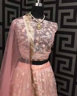 Designer Lehenga With Net Fabric Embroidery Work