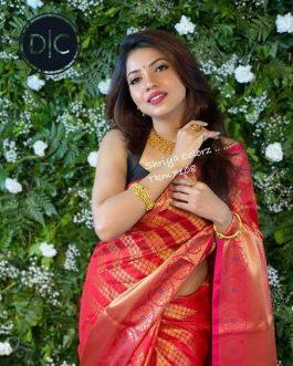 Supeb Red Color Combination Kanjiwaram Saree