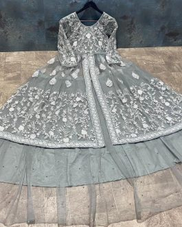 Butterfly Net Embroidery Work With Sleeves
